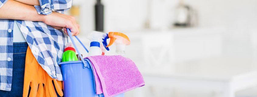 limpiadora casa seguridad social almeria